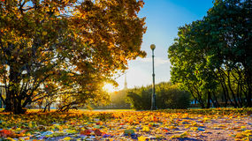 Autumn landscape. The Field of Mars in Saint Petersburg. Autumn 2016. Royalty Free Stock Photography