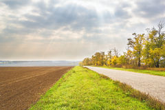 Autumn landscape with field and road on cloudy sky background. Picturesque landscape with a road in the fields, autumn acacia trees against a cloudy sky with sun Stock Photography