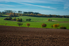 The autumn landscape. Stock Image