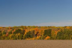 Autumn landscape with fields,trees and clear sky. Russia. Novosil Stock Image