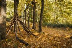 Autumn Landscape Floresta colorida do outono Fotos de Stock Royalty Free