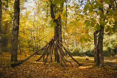 Autumn Landscape Floresta colorida do outono Fotografia de Stock