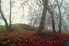 Autumn landscape. Foggy autumn park alley with bare trees and fallen autumn leaves covering the old stone stairs. Autumn landscape. Foggy autumn park alley with royalty free stock photography