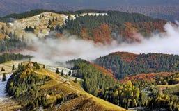 Autumn Foggy Mountain Forest Landscape stock photos
