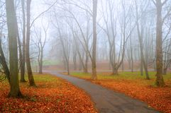 Autumn landscape - foggy lonely autumn park alley with bare trees and fallen colorful orange leaves. Autumn landscape - foggy deserted autumn park alley with stock photography