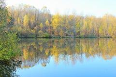 Autumn Landscape Forest Lake Immagini Stock Libere da Diritti