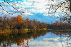 Forest lake in autumn forest Royalty Free Stock Photos