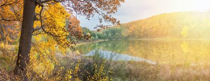 Autumn landscape - the forest by lake in the sunny autumn day. Background royalty free stock image