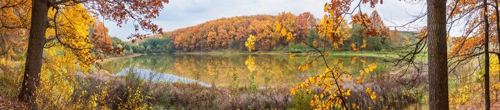 Autumn landscape - the forest by lake in the sunny autumn day royalty free stock photography