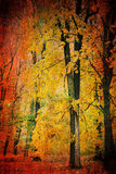 Autumn landscape. In the forest with yellow leaves royalty free illustration