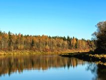 Autumn landscape of Gauja river valley and colorful forest reflection in mirror water royalty free stock photos
