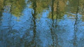 Autumn landscape, gloomy misty forest lake, reflection. Autumn landscape, gloomy misty forest lake, reflection hd stock video
