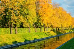 Autumn landscape - golden autumn trees along the city channel in the autumn day Royalty Free Stock Photo