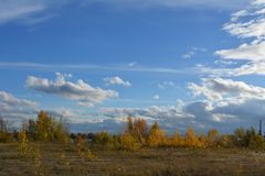 Autumn landscape with golden trees. Panoramic view with beautiful sky.  stock image