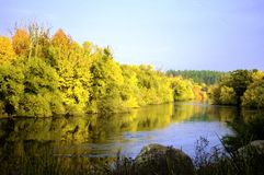Autumn landscape. Golden yellow leaves on trees, near small river and clear blue sky Royalty Free Stock Image