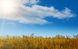 Autumn landscape in good warm weather Royalty Free Stock Image