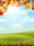 Autumn landscape grass hill maple branch. Vector autumn landscape with sky and hills. Maple branches and grass with fallen leaves on foreground Royalty Free Stock Photography