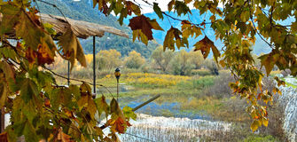 Autumn Landscape. Grassy mountain river in autumn Stock Image