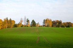 Autumn landscape. Royalty Free Stock Images
