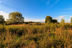 Autumn landscape with green grass on a meadow and cloudly sky Royalty Free Stock Photo