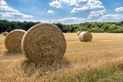 Autumn landscape. Harvest field with straw bale Stock Image