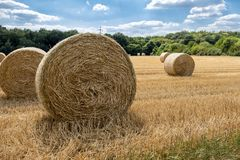 Autumn landscape. Harvest field with straw bale Royalty Free Stock Images