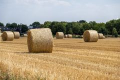 Autumn landscape. Harvest field with straw bale Stock Photo