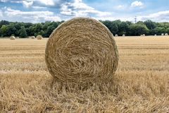 Autumn landscape. Harvest field with straw bale Royalty Free Stock Photo