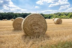 Autumn landscape. Harvest field with straw bale Stock Images