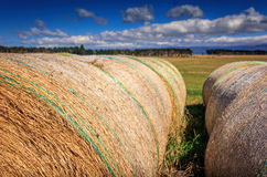 Autumn landscape with haystack at the farm Royalty Free Stock Photos