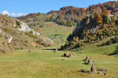 Autumn landscape with haystacks in a valley Royalty Free Stock Image