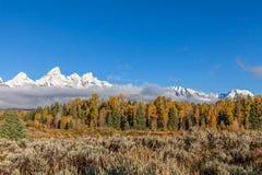 Autumn Landscape i Tetonsen Royaltyfri Foto