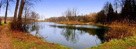 Autumn Landscape Il lago intorno a cui Polwheal ha coperto di foglie Fotografia Stock