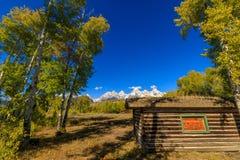 Autumn Landscape im Tetons Lizenzfreie Stockfotos