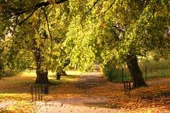Autumn Landscape. Stock Photos