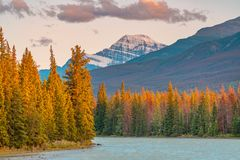 Free Autumn Landscape In The Canadian Rockies Stock Photography - 160838512