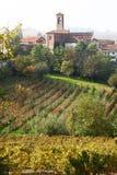 Autumn landscape of italian vineyard. An autumn landscape of italian vineyard stock photos