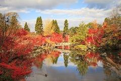 Autumn landscape with Japanese Lantern. Stock Photo