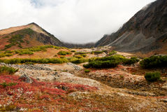 Autumn landscape in Kamchatka Stock Images
