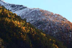 Autumn Landscape in Kaupanger, Norway. Autumn landscape with colorful trees and some fresh snow on the top of the mountain in evening light in Kaupanger, Norway Stock Photo