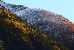 Autumn Landscape in Kaupanger, Norway Stock Photo