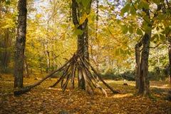 Autumn Landscape Kleurrijk de herfstbos stock fotografie