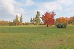 Autumn landscape. Kolomenskoye, Moscow Royalty Free Stock Images