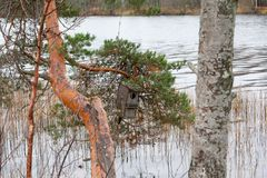 Autumn landscape of Kymijoki river waters and nesting box on a tree, Finland, Kymenlaakso, Kouvola.  royalty free stock photography