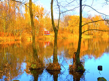 Autumn landscape on a lake royalty free stock image