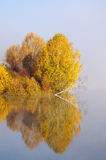 Autumn landscape on the lake Royalty Free Stock Photo