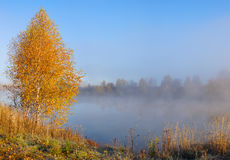Autumn landscape on the lake Royalty Free Stock Photography
