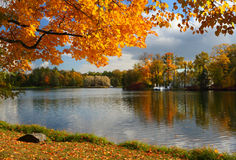Autumn landscape. With the lake Royalty Free Stock Photos