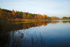 Autumn landscape with lake Royalty Free Stock Images