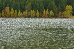 Autumn landscape of lake and colored trees Royalty Free Stock Photos